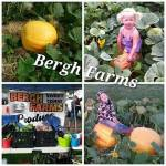 Bergh Farms